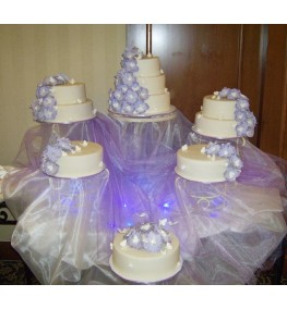 Wedding Cake 006