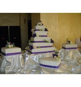 Wedding Cake 048