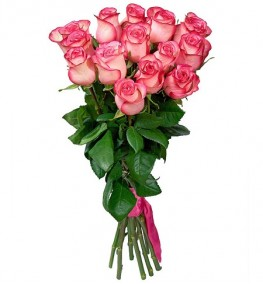 Pink Roses with Ribbon