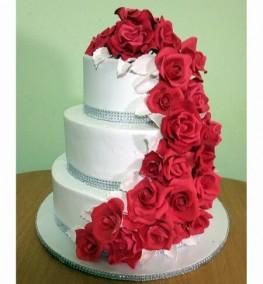 Cake-0157