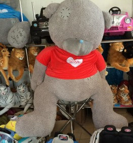 Teddy Bear 0021