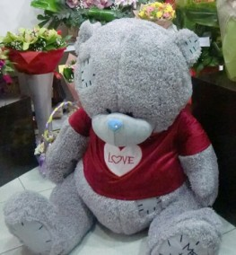 Teddy Bear 0022