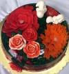 Jelly Cake-040
