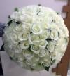 55 White Roses