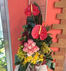 Armenian Flower Shops Flower Shop In Armenia Freesia Flowers Anemon Flower Salon