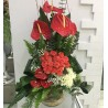 Roses and Anthuriums