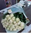 15 White Roses